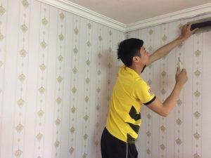 DECAL dán tường chống ẩm